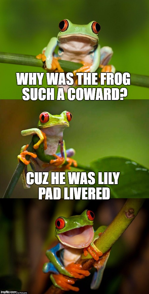 Scared Frog pun | WHY WAS THE FROG SUCH A COWARD? CUZ HE WAS LILY PAD LIVERED | image tagged in frog puns,frog pond,memes,bad pun | made w/ Imgflip meme maker
