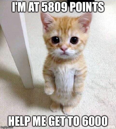 Cute Cat |  I'M AT 5809 POINTS; HELP ME GET TO 6000 | image tagged in memes,cute cat | made w/ Imgflip meme maker