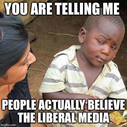Third World Skeptical Kid Meme | YOU ARE TELLING ME PEOPLE ACTUALLY BELIEVE THE LIBERAL MEDIA | image tagged in memes,third world skeptical kid | made w/ Imgflip meme maker