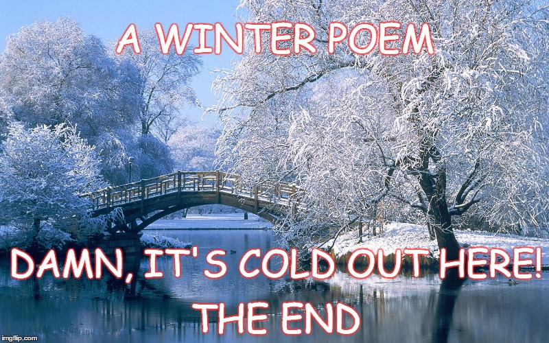 Winter Poem | A WINTER POEM THE END DAMN, IT'S COLD OUT HERE! | image tagged in cold weather,cold,freezing,winter is here,winter,winter is coming | made w/ Imgflip meme maker