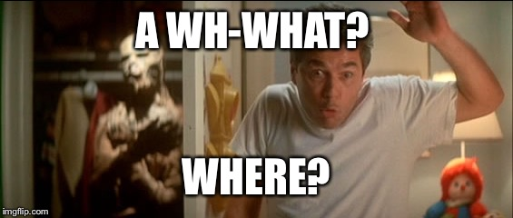 A WH-WHAT? WHERE? | made w/ Imgflip meme maker