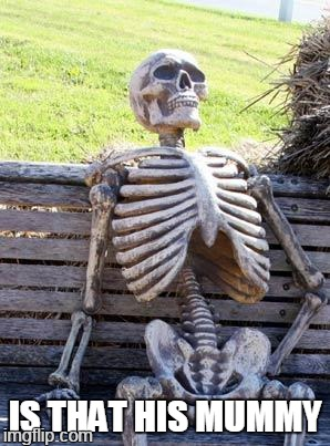 Waiting Skeleton Meme | IS THAT HIS MUMMY | image tagged in memes,waiting skeleton | made w/ Imgflip meme maker