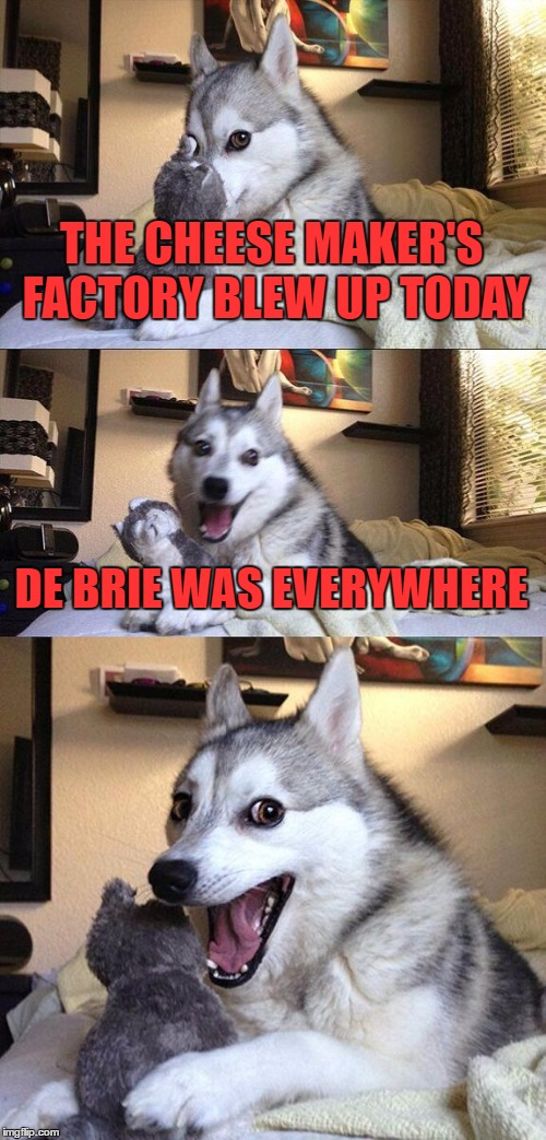 Bad Pun Dog |  THE CHEESE MAKER'S FACTORY BLEW UP TODAY; DE BRIE WAS EVERYWHERE | image tagged in memes,bad pun dog | made w/ Imgflip meme maker