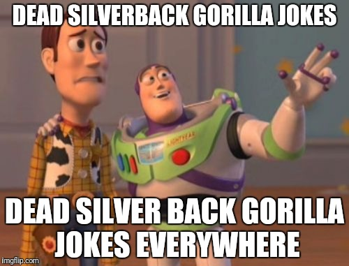 X, X Everywhere Meme | DEAD SILVERBACK GORILLA JOKES DEAD SILVER BACK GORILLA JOKES EVERYWHERE | image tagged in memes,x x everywhere | made w/ Imgflip meme maker