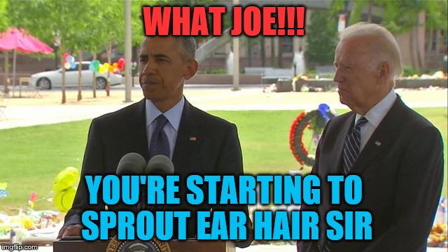 WHAT JOE!!! YOU'RE STARTING TO SPROUT EAR HAIR SIR | made w/ Imgflip meme maker