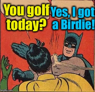 Batman Slapping Robin Meme | You golf today? Yes, I got a Birdie! | image tagged in memes,batman slapping robin | made w/ Imgflip meme maker