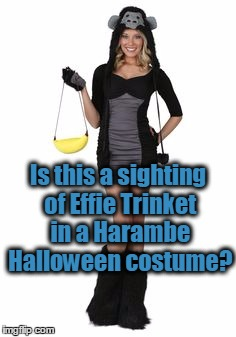 Is this a sighting of Effie Trinket in a Harambe Halloween costume? | made w/ Imgflip meme maker