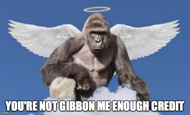 YOU'RE NOT GIBBON ME ENOUGH CREDIT | made w/ Imgflip meme maker