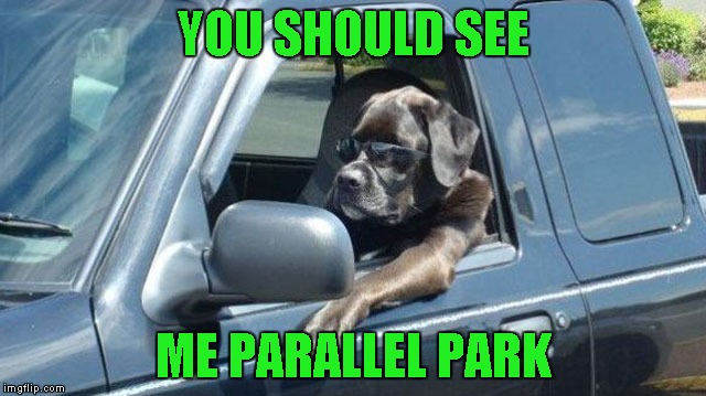 YOU SHOULD SEE ME PARALLEL PARK | made w/ Imgflip meme maker