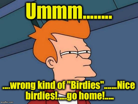 "Futurama Fry Meme | Ummm........ ....wrong kind of ""Birdies"".......Nice birdies!.....go home!..... 