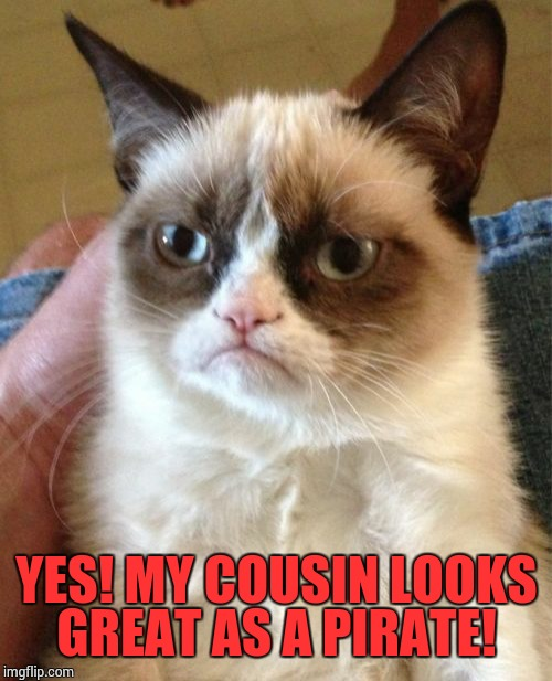 Grumpy Cat Meme | YES! MY COUSIN LOOKS GREAT AS A PIRATE! | image tagged in memes,grumpy cat | made w/ Imgflip meme maker