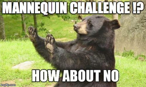 How About No Bear |  MANNEQUIN CHALLENGE !? | image tagged in memes,how about no bear | made w/ Imgflip meme maker