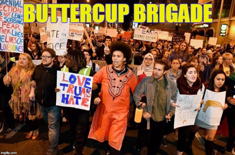 Buttercup Brigade Imgflip