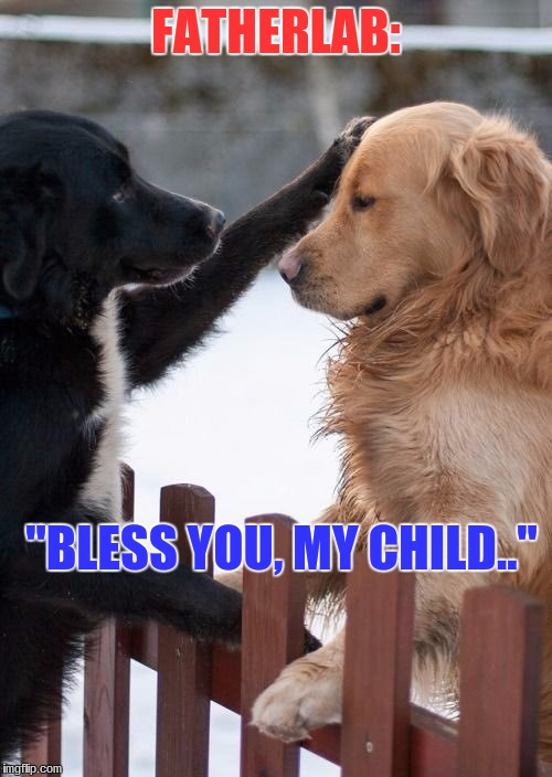 "FATHERLAB:; ""BLESS YOU, MY CHILD.."" 