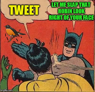 Batman Slapping Robin Meme | TWEET LET ME SLAP THAT ROBIN LOOK RIGHT OF YOUR FACE | image tagged in memes,batman slapping robin | made w/ Imgflip meme maker