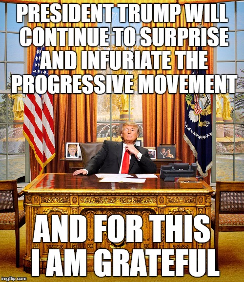 Progressive Liberal Frustration 101 | PRESIDENT TRUMP WILL CONTINUE TO SURPRISE AND INFURIATE THE PROGRESSIVE MOVEMENT AND FOR THIS I AM GRATEFUL | image tagged in trump to gop,memes,donald trump | made w/ Imgflip meme maker