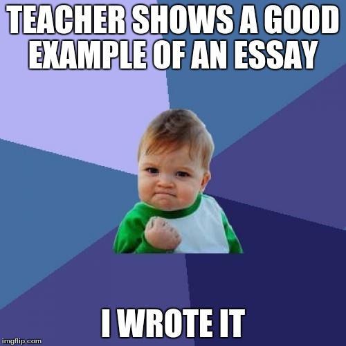 Good to know that mine was good | TEACHER SHOWS A GOOD EXAMPLE OF AN ESSAY I WROTE IT | image tagged in memes,success kid,essay,school | made w/ Imgflip meme maker