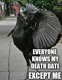 Turkey | EVERYONE KNOWS MY DEATH DATE EXCEPT ME | image tagged in turkey | made w/ Imgflip meme maker