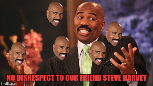 Steve Harvey Meme | NO DISRESPECT TO OUR FRIEND STEVE HARVEY | image tagged in memes,steve harvey | made w/ Imgflip meme maker