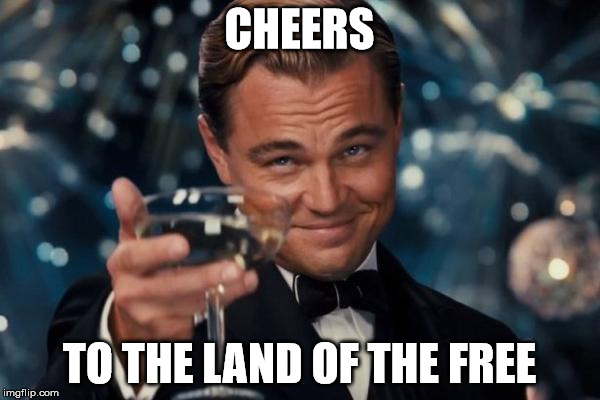 Leonardo Dicaprio Cheers Meme | CHEERS TO THE LAND OF THE FREE | image tagged in memes,leonardo dicaprio cheers | made w/ Imgflip meme maker