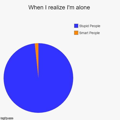 Smart to Stupid Ratio | When I realize I'm alone | Smart People, Stupid People | image tagged in funny,pie charts,smart people,stupid people | made w/ Imgflip chart maker