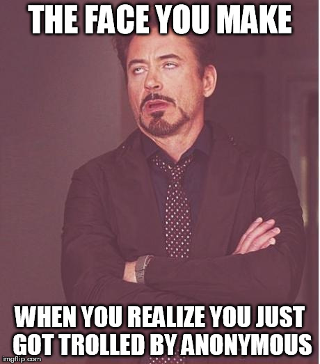 Face You Make Robert Downey Jr Meme | THE FACE YOU MAKE WHEN YOU REALIZE YOU JUST GOT TROLLED BY ANONYMOUS | image tagged in memes,face you make robert downey jr | made w/ Imgflip meme maker