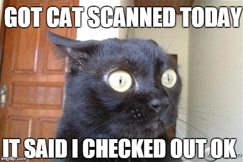 BUT WILL A CAT TELL YOU THE TRUTH? | GOT CAT SCANNED TODAY IT SAID I CHECKED OUT OK | image tagged in cats,cat scientist,medical | made w/ Imgflip meme maker