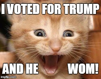 Still can't hide the grin | I VOTED FOR TRUMP AND HE             WOM! | image tagged in memes,excited cat,election 2016 | made w/ Imgflip meme maker
