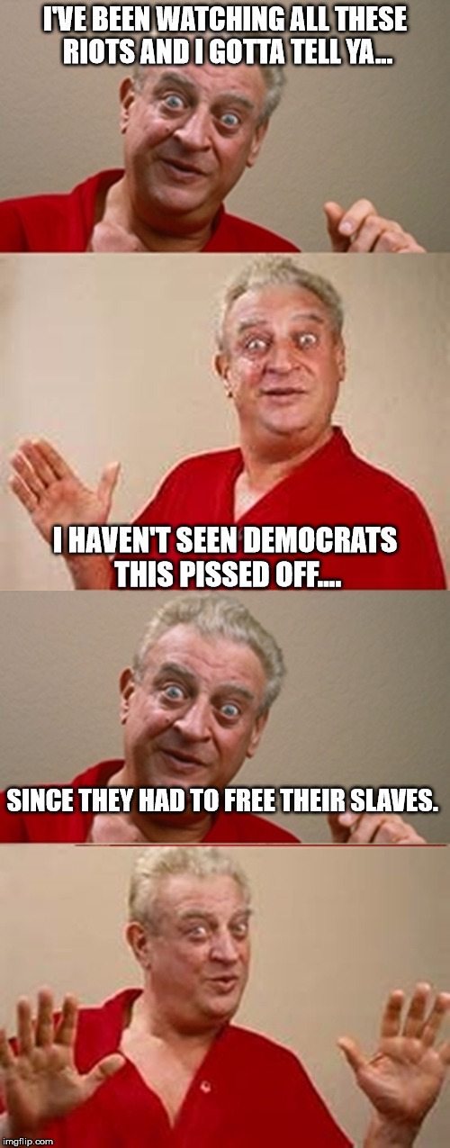 Rodney | I'VE BEEN WATCHING ALL THESE RIOTS AND I GOTTA TELL YA... I HAVEN'T SEEN DEMOCRATS THIS PISSED OFF.... SINCE THEY HAD TO FREE THEIR SLAVES. | image tagged in rodney | made w/ Imgflip meme maker