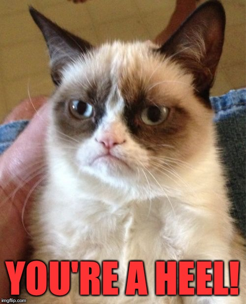 Grumpy Cat Meme | YOU'RE A HEEL! | image tagged in memes,grumpy cat | made w/ Imgflip meme maker