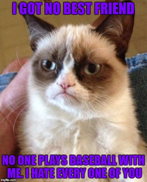 Grumpy Cat Meme | I GOT NO BEST FRIEND NO ONE PLAYS BASEBALL WITH ME. I HATE EVERY ONE OF YOU | image tagged in memes,grumpy cat | made w/ Imgflip meme maker