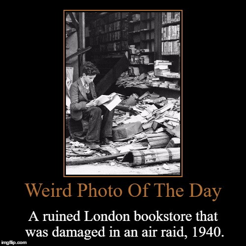 The Moral Of This Image: Knowledge Will Always Prevail | Weird Photo Of The Day | A ruined London bookstore that was damaged in an air raid, 1940. | image tagged in funny,demotivationals,weird,photo of the day,london,air raid | made w/ Imgflip demotivational maker