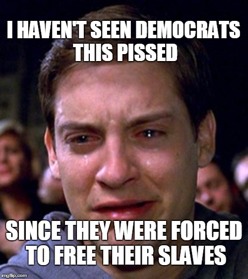 crying peter parker | I HAVEN'T SEEN DEMOCRATS THIS PISSED SINCE THEY WERE FORCED TO FREE THEIR SLAVES | image tagged in crying peter parker | made w/ Imgflip meme maker