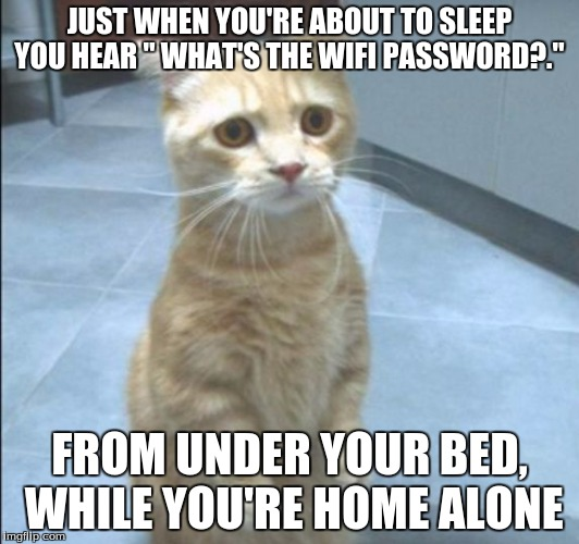 "Wifi Mysteries | JUST WHEN YOU'RE ABOUT TO SLEEP YOU HEAR "" WHAT'S THE WIFI PASSWORD?."" FROM UNDER YOUR BED, WHILE YOU'RE HOME ALONE 