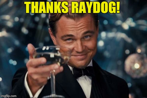 Leonardo Dicaprio Cheers Meme | THANKS RAYDOG! | image tagged in memes,leonardo dicaprio cheers | made w/ Imgflip meme maker