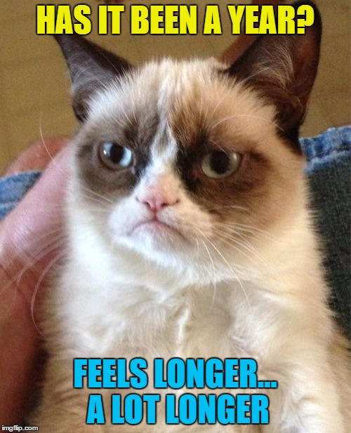 Grumpy Cat Meme | HAS IT BEEN A YEAR? FEELS LONGER... A LOT LONGER | image tagged in memes,grumpy cat | made w/ Imgflip meme maker