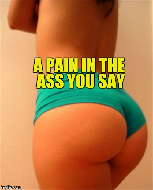 A PAIN IN THE ASS YOU SAY | made w/ Imgflip meme maker