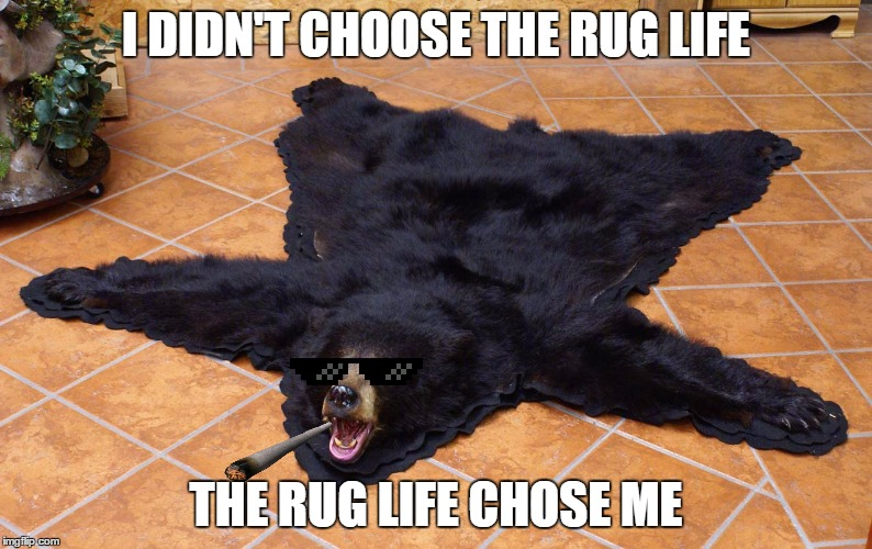 Grin and bear it |  I DIDN'T CHOOSE THE RUG LIFE; THE RUG LIFE CHOSE ME | image tagged in memes,thug life,bear | made w/ Imgflip meme maker