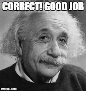CORRECT! GOOD JOB | made w/ Imgflip meme maker