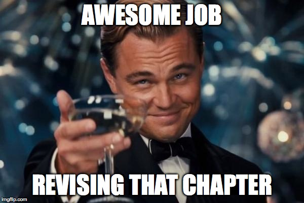 Leonardo Dicaprio Cheers Meme |  AWESOME JOB; REVISING THAT CHAPTER | image tagged in memes,leonardo dicaprio cheers | made w/ Imgflip meme maker