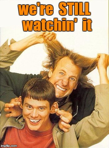 DUMB and dumber | we're  STILL  watchin'  it | image tagged in dumb and dumber | made w/ Imgflip meme maker