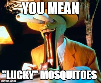 "YOU MEAN ""LUCKY"" MOSQUITOES 