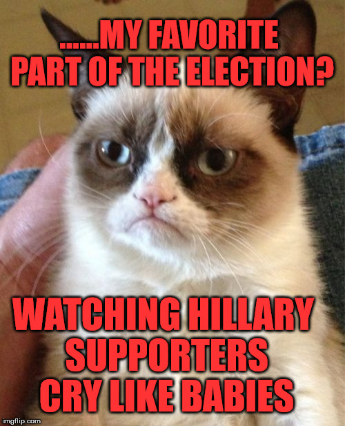 Grumpy Cat |  ......MY FAVORITE PART OF THE ELECTION? WATCHING HILLARY SUPPORTERS CRY LIKE BABIES | image tagged in memes,grumpy cat | made w/ Imgflip meme maker