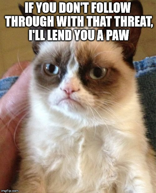Grumpy Cat Meme | IF YOU DON'T FOLLOW THROUGH WITH THAT THREAT, I'LL LEND YOU A PAW | image tagged in memes,grumpy cat | made w/ Imgflip meme maker