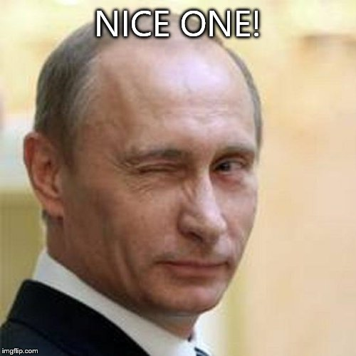 Putin Wink | NICE ONE! | image tagged in putin wink | made w/ Imgflip meme maker