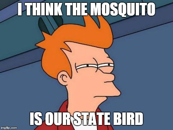 Futurama Fry Meme | I THINK THE MOSQUITO IS OUR STATE BIRD | image tagged in memes,futurama fry | made w/ Imgflip meme maker