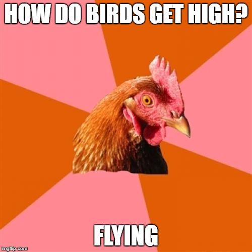 Anti Joke Chicken Meme | HOW DO BIRDS GET HIGH? FLYING | image tagged in memes,anti joke chicken | made w/ Imgflip meme maker