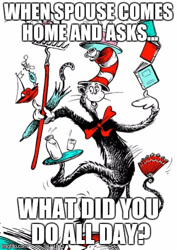 Stay at home moms | WHEN SPOUSE COMES HOME AND ASKS... WHAT DID YOU DO ALL DAY? | image tagged in cat in the hat,stay at home mom | made w/ Imgflip meme maker