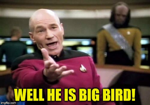 Picard Wtf Meme | WELL HE IS BIG BIRD! | image tagged in memes,picard wtf | made w/ Imgflip meme maker