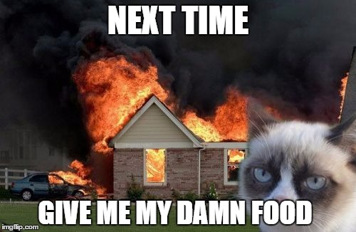 Burn Kitty | NEXT TIME GIVE ME MY DAMN FOOD | image tagged in memes,burn kitty,grumpy cat | made w/ Imgflip meme maker